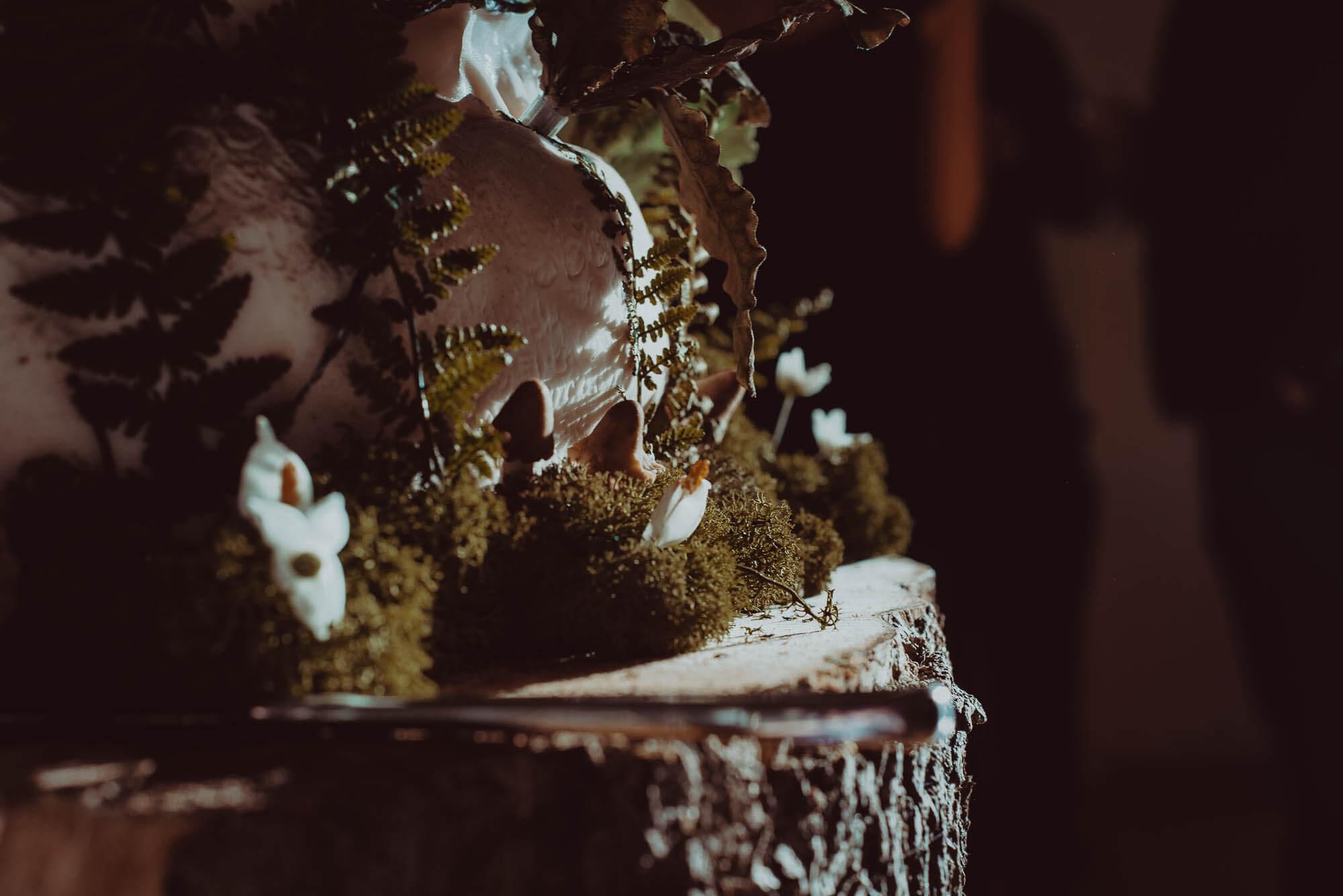 Schivas House - Wedding Cake